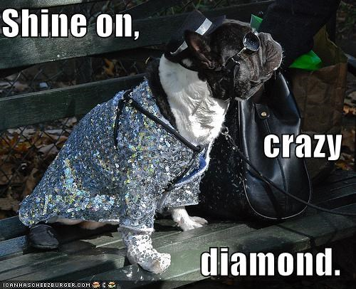 Shine on, crazy diamond.