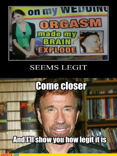 brain,chuck norris,feel goodtimes,seems legit,the internets,wedding