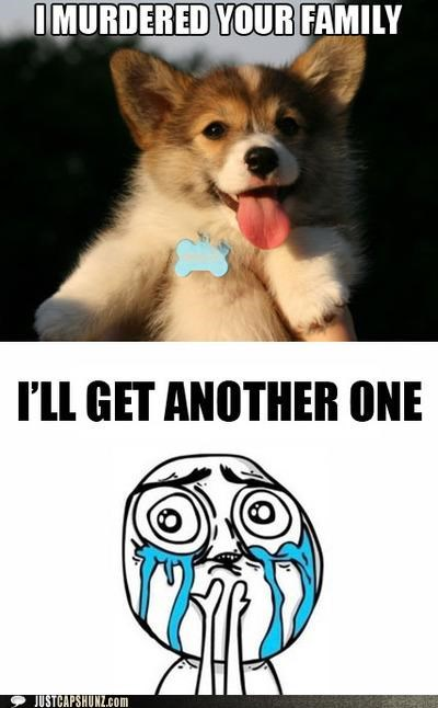 adrobz,aww,corgi,i love you,murder,murderer,no worries,puppy,worth it