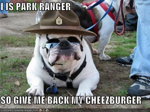 Cheezburger Image 5335436288
