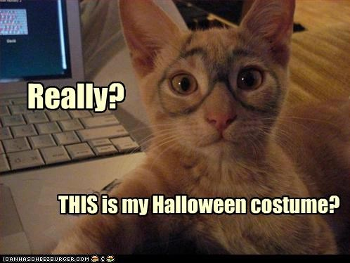 caption,captioned,cat,costume,do not want,Hall of Fame,halloween,meowloween,really,this,upset