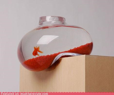 bubble edge Fishbowl goldfish hang - 5336704000