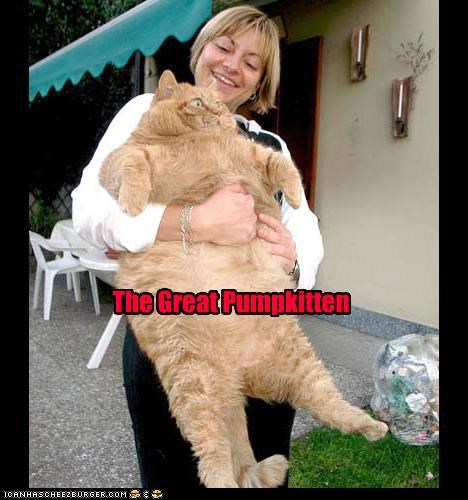 caption captioned cat coloring great great pumpkin Hall of Fame legend meowloween peanuts pumpkins pun tabby - 5336731648