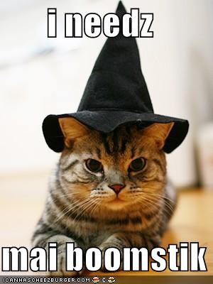 best of the week boomstick broomstick caption captioned cat evil dead Hall of Fame halloween hat meowloween need