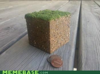 block cube grass IRL Memes minecraft reality video games - 5338138624