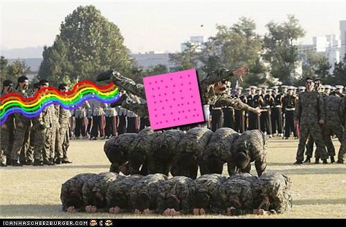 army,Memes,Nyan Cat,political pictures