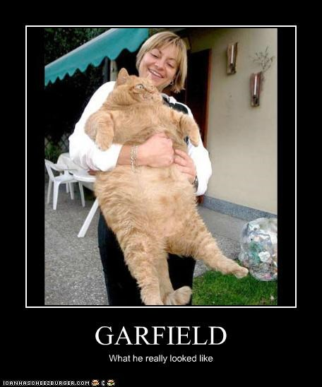 GARFIELD What he really looked like