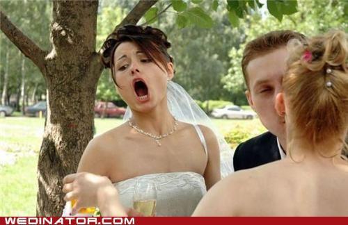 bride funny wedding photos - 5340805888