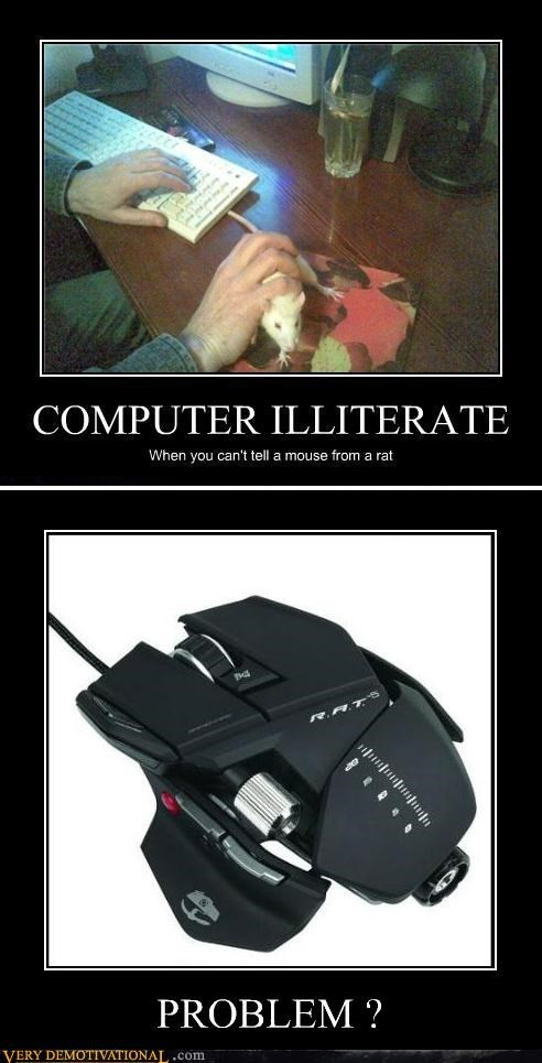 computer illiterate hilarious mouse rat - 5340975616