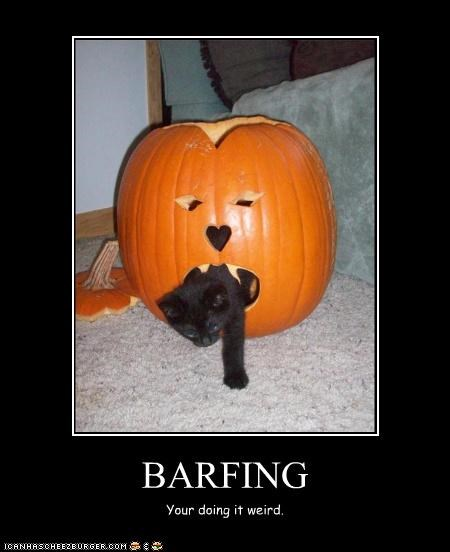 BARFING Your doing it weird.