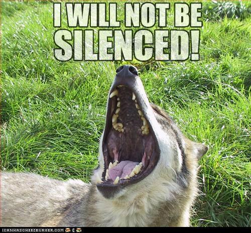 I WILL NOT BE SILENCED!