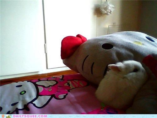 Cute picture of a rabbit on the bed.