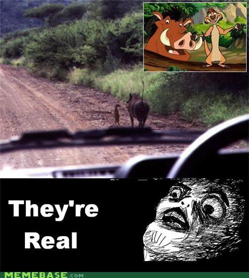 believer hakuna matata IRL lion king raisins-super-fuuuu timon and pumba