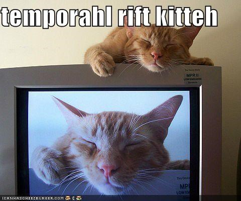 caption captioned cat Catception display Inception rift screen sleeping tabby temporal TV - 5344568320