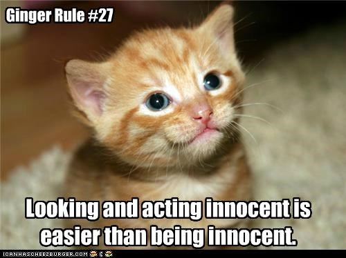 Ginger Rule #27 Looking and acting innocent is easier than being innocent.