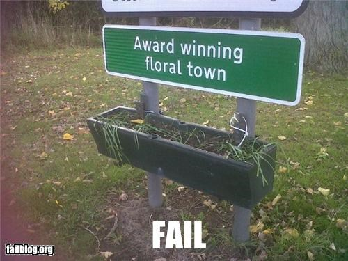 award,failboat,flowers,g rated,ironic,showing off,signs