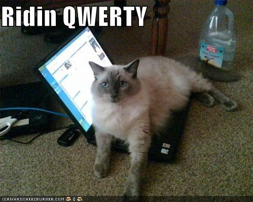 computers laptops lolcats Music qwerty rap - 534694656