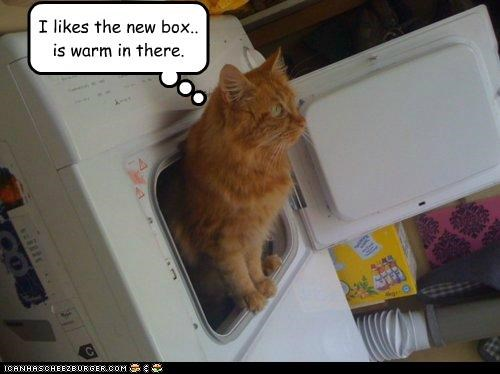 I likes the new box.. is warm in there.
