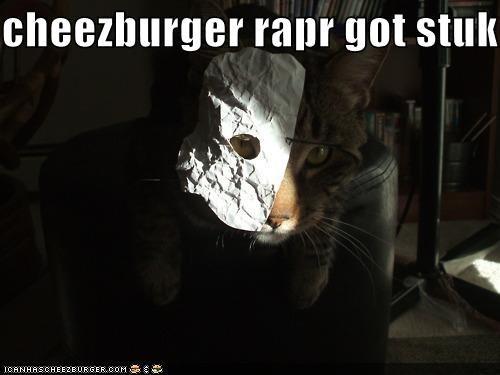 Cheezburger Image 5348009216