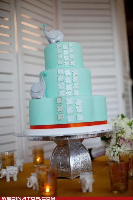 cake,elephants,funny wedding photos,wedding cake