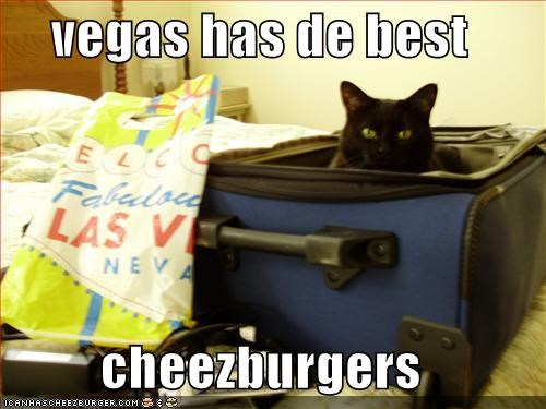 Cheezburger Image 5348756992