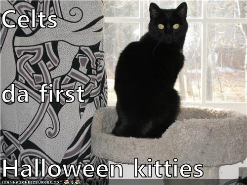 Celts da first Halloween kitties