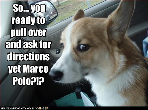 ask for directions best of the week car corgi directions drive driving Hall of Fame lost Marco Polo were-lost