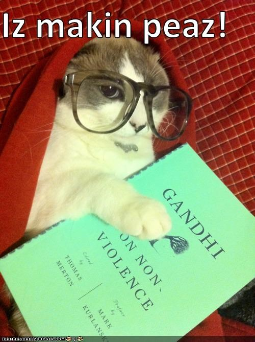 caption captioned cat gandhi glasses hipster hipster cat hoodie lolwut making peace peas reading - 5350004736