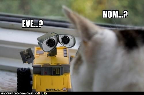 caption captioned cat confused disney nom pixar question questions wall.e - 5350025728