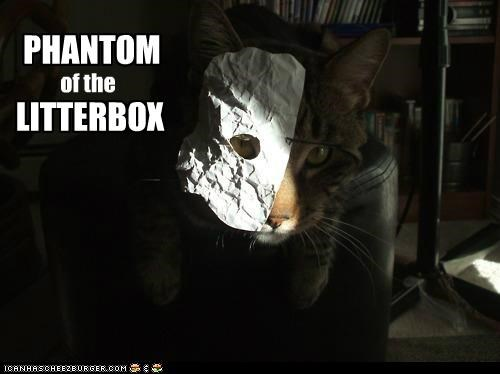 caption captioned cat litterbox mask musical phantom of the opera