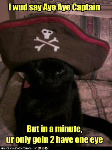 I wud say Aye Aye Captain But in a minute, ur only goin 2 have one eye Chech1965 241011