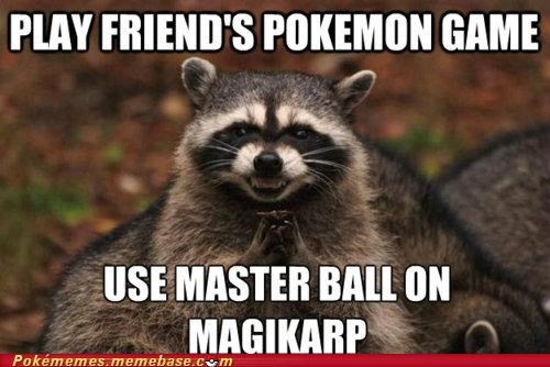 best of week,evil plotting racoon,magikarp,master ball,meme,Memes,shiny,useless
