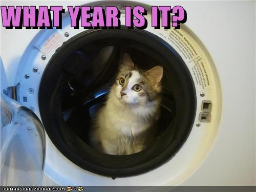 caption captioned cat confused dryer era question time time travel what year - 5351702784