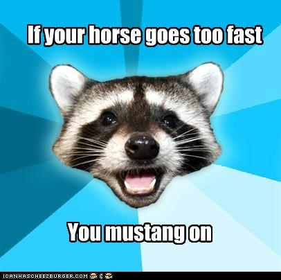 animemes,fast,horse,Lame Pun Coon,lone ranger,mustang,speed,trip