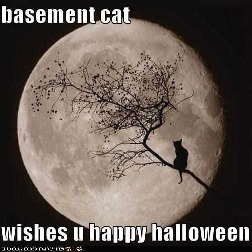 basement cat classics full moon Hall of Fame halloween meowloween moon silhouette trees - 5352667136