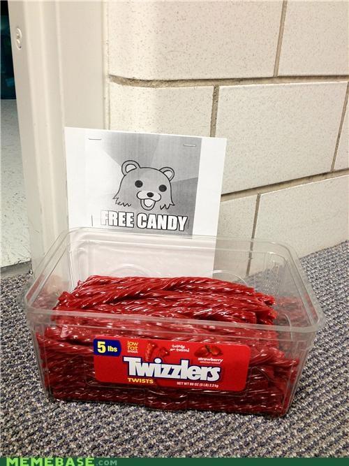 candy IRL pedobear trick or treat - 5352777216