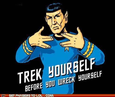 check yourself Leonard Nimoy Spock Star Trek trek Vulcan - 5352877568