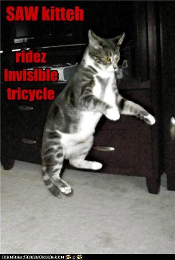 SAW kitteh ridez invisible tricycle
