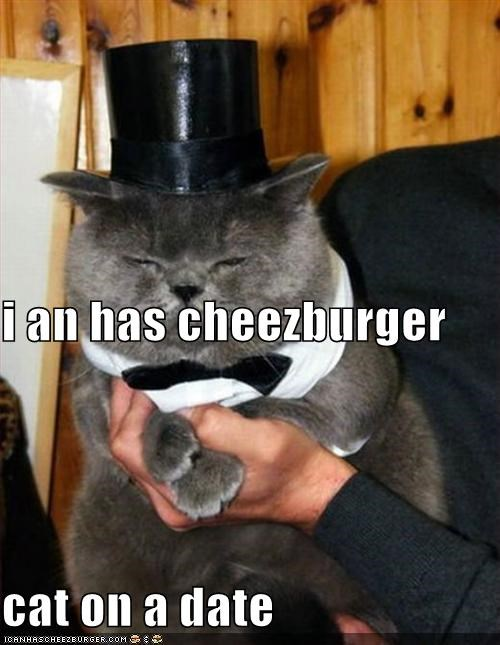 Cheezburger Image 5353502720