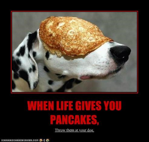 WHEN LIFE GIVES YOU PANCAKES, Throw them at your dog.