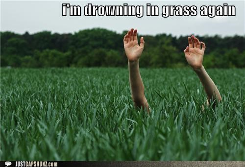 bad day,drowning,drowning in grass,grass,thats-a-bummer-man