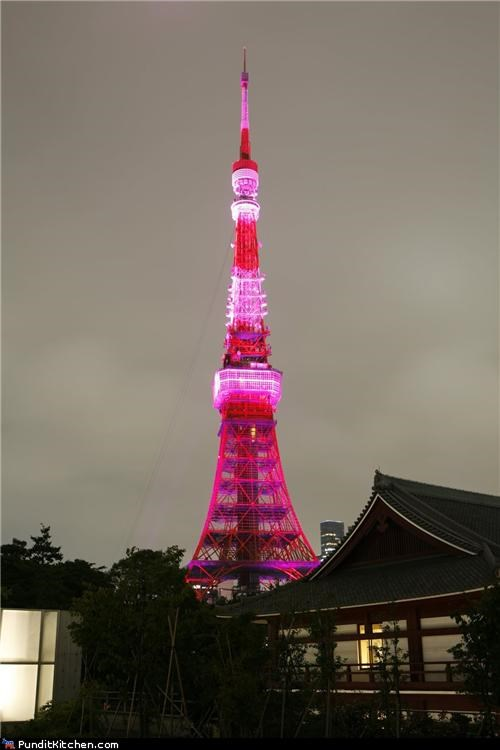 australia Breast Cancer downing street hong kong los angeles monuments new york city pink political pictures the white house tokyo