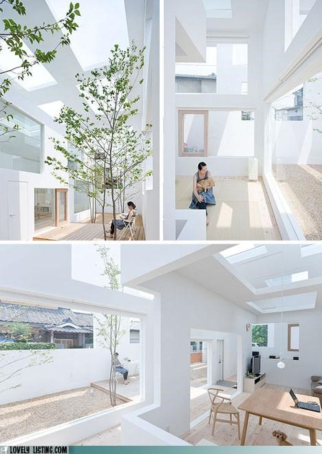 light open skylights white windows - 5355618048