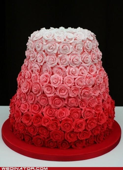 cake funny wedding photos Hall of Fame roses wedding cake - 5356077312