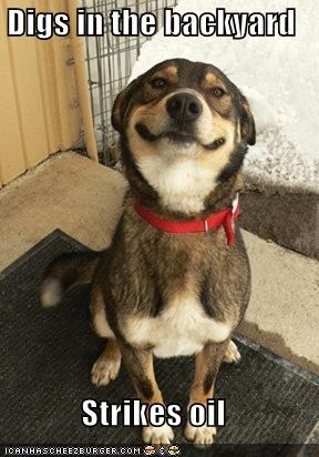 animemes backyard dig dogs Good Dog Greg oil - 5356111360