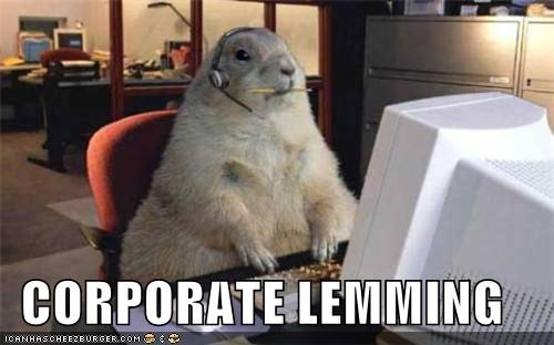 animals,computer,corporate,corporate lemming,i hate my job,job,lemming,squirrel,this job sucks,work,working