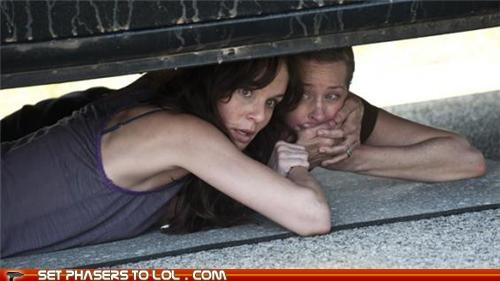 dead lori grimes news renewed sarah wayne callies season The Walking Dead zombie