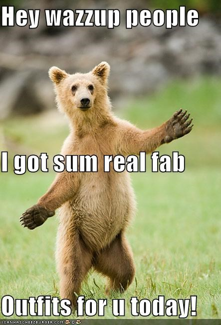 animals bear fashion outfits prancing around all cute like style wazzup - 5358579200