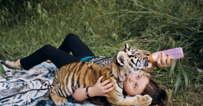 art cute portraits amazing girl animals photographer - 5358853