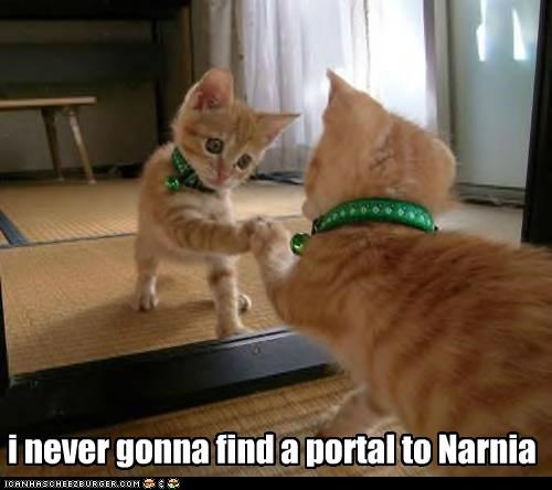 i never gonna find a portal to Narnia